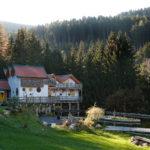 Dom Aurora Kraig